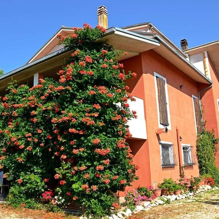 Casa 430 m²