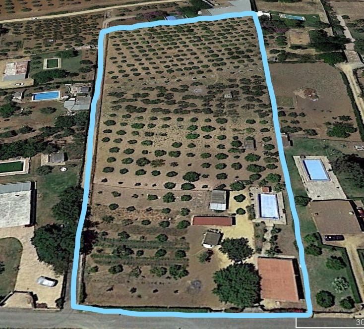 Terrain 12184 m²